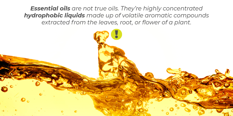 Essential oils are not true oils. They're highly concentrated hydrophobic liquids made up of volatile aromatic compounds extracted from the leaves, root, or flower of a plant.