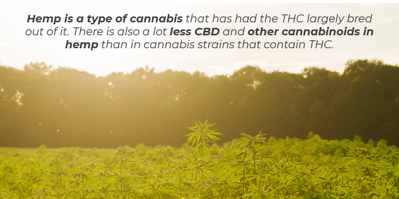 Hemp is a type of cannabis that has had the THC largely bred out of it. There is also a lot less CBD and other cannabinoids in hemp than in cannabis strains that contain THC.