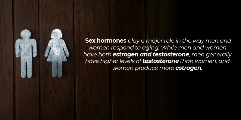 Sex hormones play a major role in the way men and women respond to aging. While men and women have both estrogen and testosterone, men generally have higher levels of testosterone than women, and women produce more estrogen.
