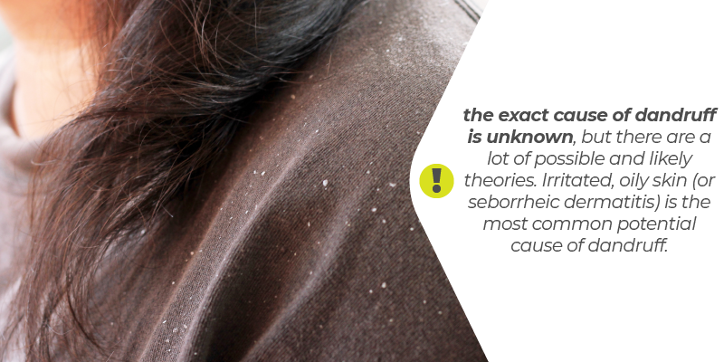 the exact cause of dandruff is unknown, but there are a lot of possible and likely theories. Irritated, oily skin (or seborrheic dermatitis) is the most common potential cause of dandruff.