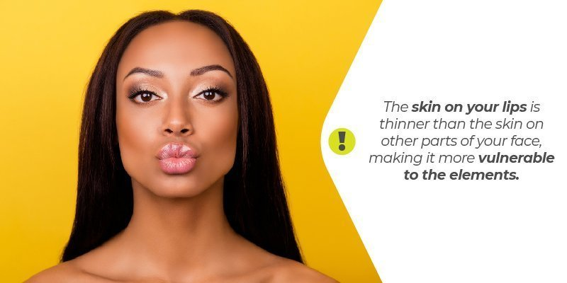 The skin on your lips is thinner than the skin on other parts of your face, making it more vulnerable to the elements.